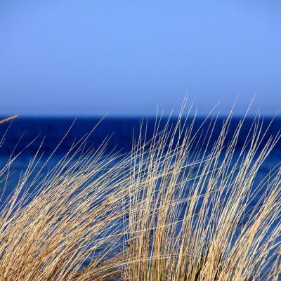 Geef de aarde door: word een ster voor de zee!