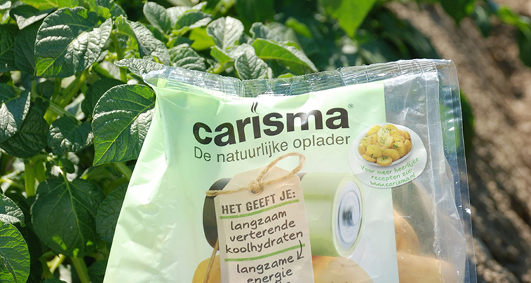 carisma-aardappel
