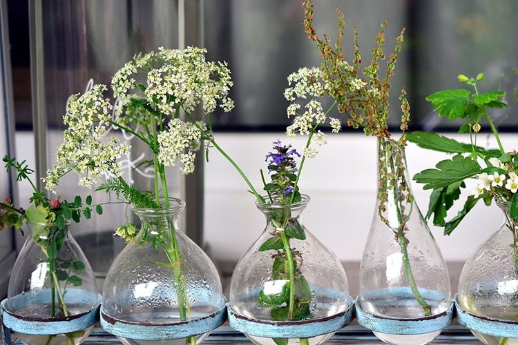 Zet onkruid in een vaas en het is een bloem