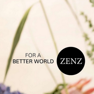 AllergyFree ZENZ hair and styling products