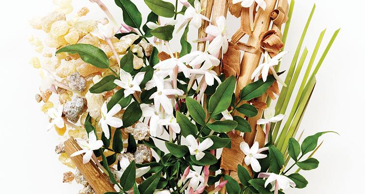 Aveda-Botanical-Hair-Spa-live-green-magazine