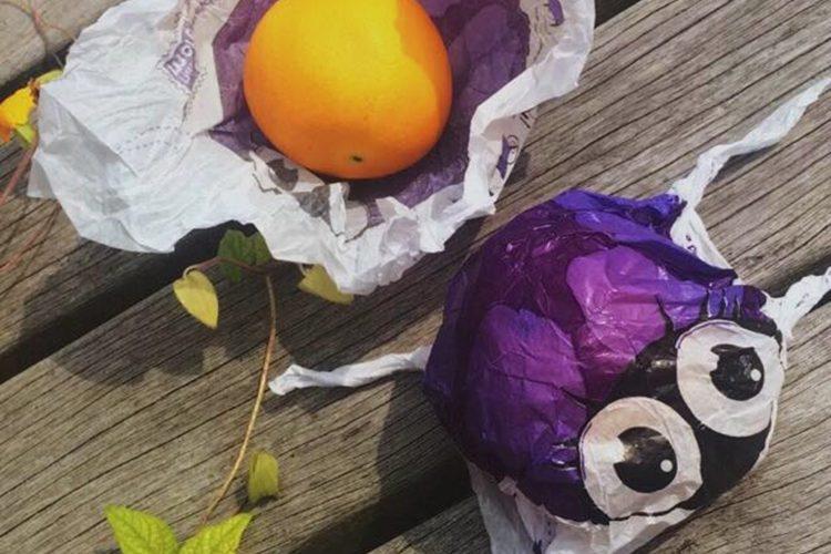 Bio bug sinaasappel als leermiddel voor kinderen