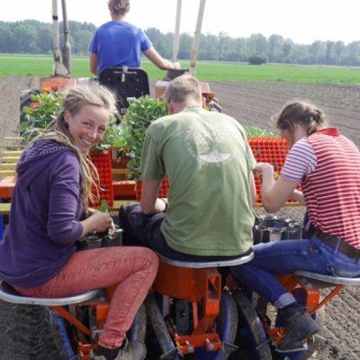 Open dag biologisch-dynamische landbouwschool Warmonderhof