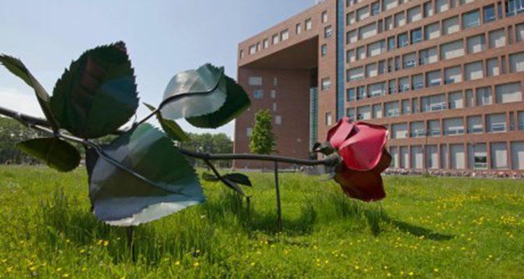 groene universiteiten wageningen