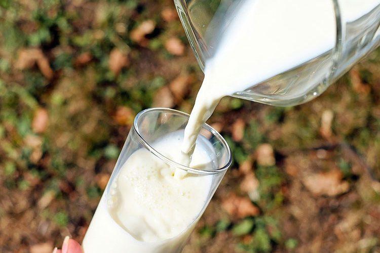 #achterbio: melk waar geen ontbossing bij komt kijken