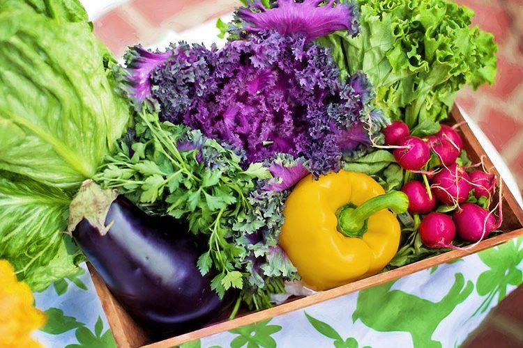 Biologisch en groen nieuws van de week: Organic food against climate change