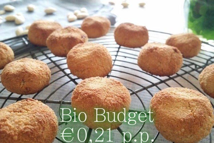 Sandra's biobudget gluten- en lactosevrije bitterkoekjes