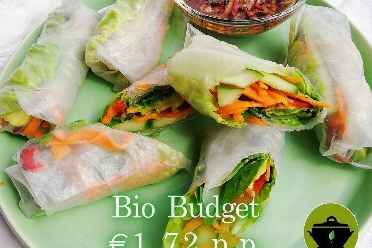 Biobudget vegan groenteloempia's van rijstpapier