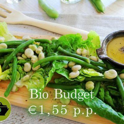 Biobudget vegan moestuinsalade met tuin- en sperciebonen