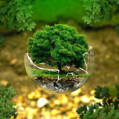 Alarm! Het is Earth Overshoot Day. Jouw inzet is nodig!