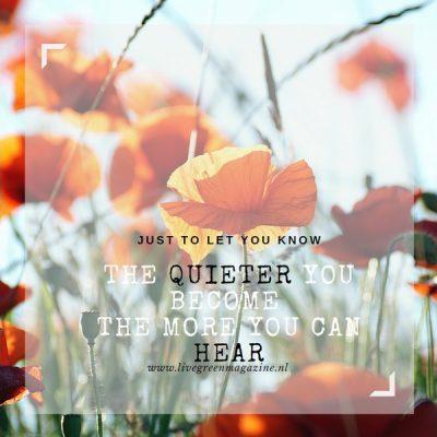 Quote en vraag week#23 gaan over stil worden en horen
