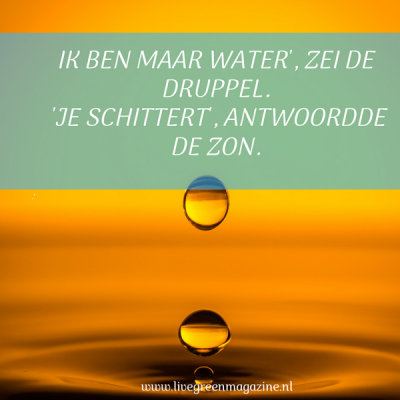 Quote en vraag week 37