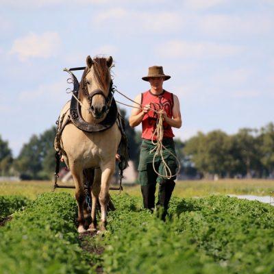 Toekomst van NL: Werken aan radicaal nieuwe landbouw