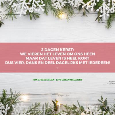 Quote en vraag over Kerst