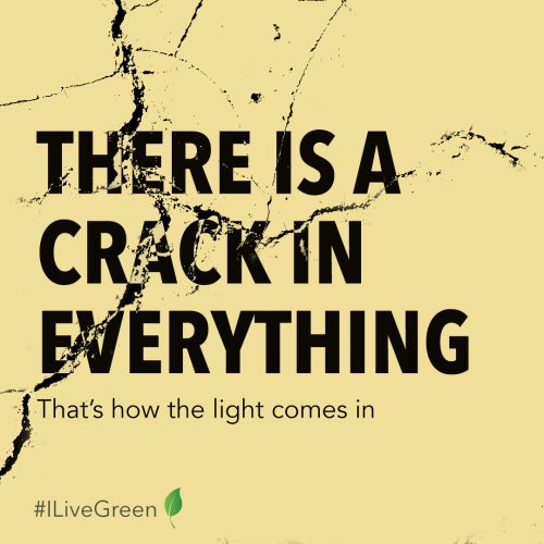 Quote - there is a crack in everything, that's how the light gets in