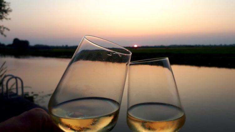 glazen wijn tegen weiland