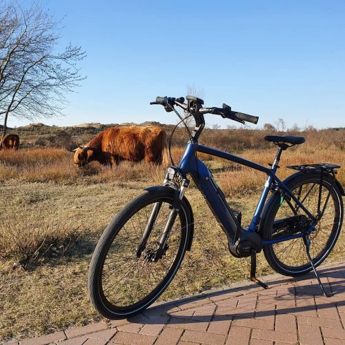 E-bike van Dutch ID