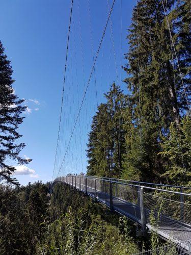 Bad Wildbad zwarte woud