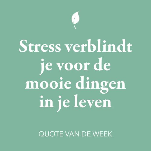 Quote over stress