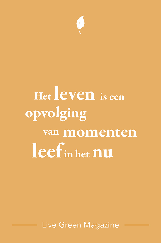 Quote over het nu