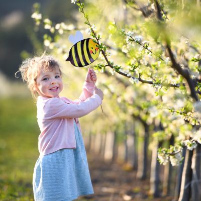 Bijentellling 2021: vraag Naturalis 'live' wat er in jouw achtertuin zoemt